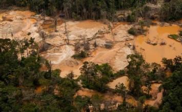 Mafias, miseria y malaria: Así es el infierno de la minería ilegal en Venezuela