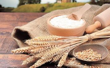 Fetraharina: Solo están llegando de 20 a 30 mil toneladas de trigo