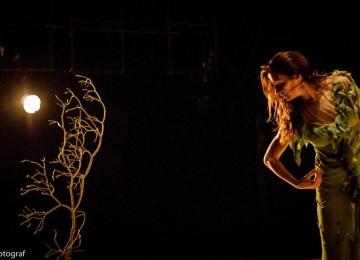 Centro Cultural Chacao invita a espectáculo de poesía y danza