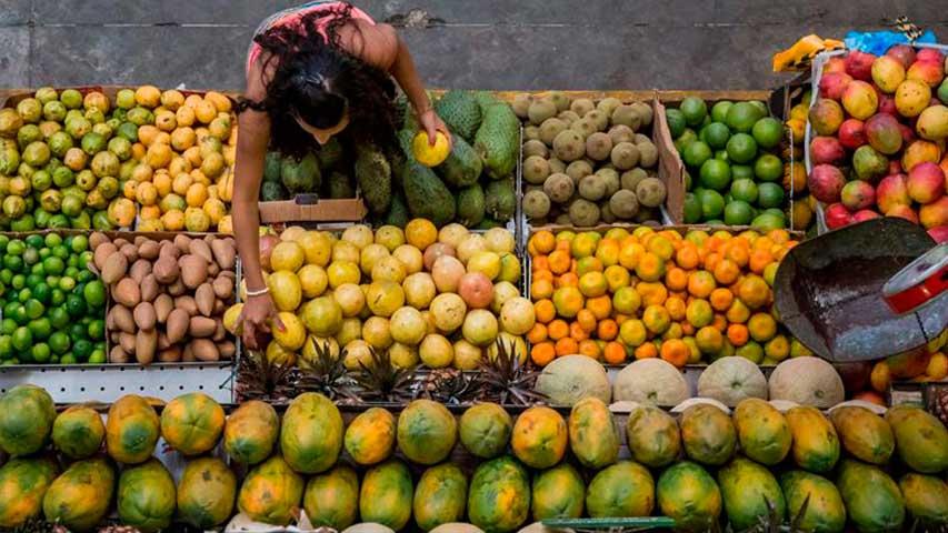 Decomisaron más de 16.000 kilos de carne de contrabando en Barinas