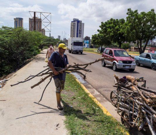 Tala indiscriminada para suplir la escasez de gas y luz en Venezuela