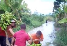 Agricultores intentan salvar sus cosechas, tras intensas lluvias (+ video)