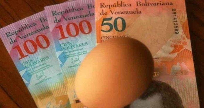 Economista dice qué se necesita para mejorar el salario venezolano
