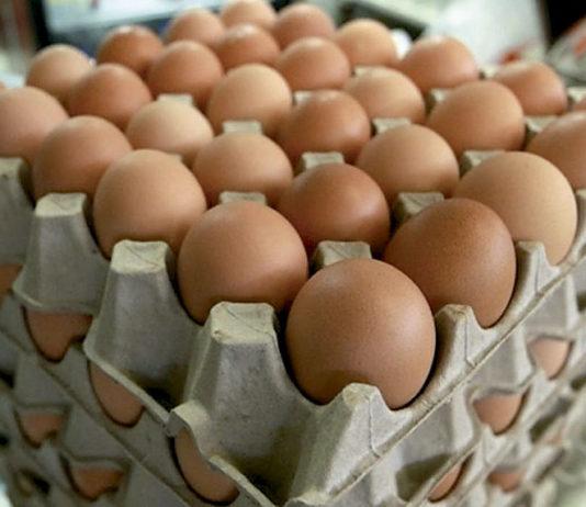 99% de las ventas de alimentos incluyen huevos