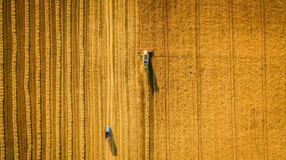 Empezar a invertir en el sector agropecuario antes de que sea tarde